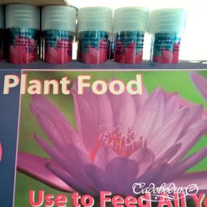 Удобрение для водных растений в таблетках 10шт